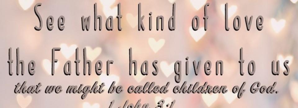 1 John 3 1