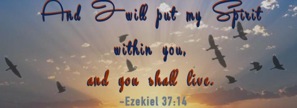Ezekiel 37-14 Banner