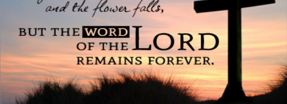 The-Word-of-the-Lord-endures-forever-1-Peter-1-24-25